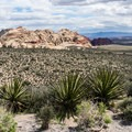 Looking toward Calico Basin from the High Point Overlook.- Scenic Loop Drive