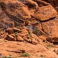 Rock climbers in Calico Basin.- Scenic Loop Drive
