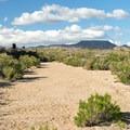 The trail follows a sandy wash.- Rings Loop Trail