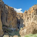 The cliff walls are dotted with holes.- Rings Loop Trail