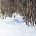 Telemark is a trail that links to the backcountry network.- Bolton Valley Nordic Center