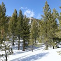 Reaching the saddle with views of Deer Mountain signals that the craters are not too far away.- Inyo Craters