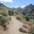 Watch out for cactus hiding on the edge of the smooth trail.- Tom's Thumb