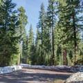 Lava Lake Sno-Park parking area.- Pumice Loop Snow Trail