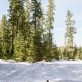 Trailhead for the Pumice Loop Snow Trail.- Pumice Loop Snow Trail