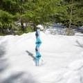 Trail junction.- Pumice Loop Snow Trail