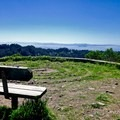 High point on the Seaview Trail.- Seaview Trail to Inspiration Point