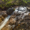 Slagle Creek.- Manistee River Trail Loop