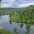 River reflections.- Manistee River Trail Loop