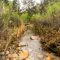 Pine Creek.- Pine Creek Canyon Hike