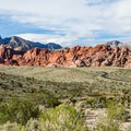 View of the Calico Basin area and the Scenic Loop Drive.- Red Rock Canyon National Conservation Area