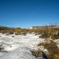Snowshoeing through the Provo River floodplain.- Pine Valley Snowshoeing