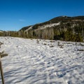 The blue sticks on the edge of Pine Valley mark a cross-country ski trail that circles the meadow.- Pine Valley Snowshoeing