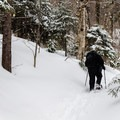 The Stowe area gets a lot of snow, so breaking trail might be required.- The Mansfield Range via Long Trail + Haselton Trail