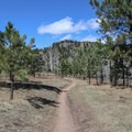 The trail is easy to moderate the whole way down and back to the parking lot from the summit of Evergreen Mountain- Alderfer/Three Sisters Park Loop
