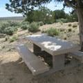 A nicely situated picnic table provides a shady respite in the hot desert.- Rock Springs Loop
