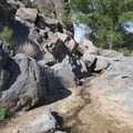 Running water is a rare find on this dry desert.- Rock Springs Loop