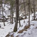 Continue through hemlock groves.- Kaaterskill Falls Snowshoe