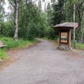 Beginning of short nature walk.- Denali Lookout North + Campground