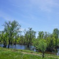 There can be minor flooding from the American River during winter months.- Sacramento Northern Bikeway