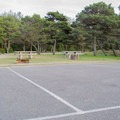 Typical campsites with picnic tables and fire rings.- Driftwood II Campground
