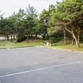 Typical campsites in Driftwood II Campground.- Driftwood II Campground