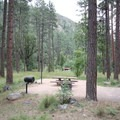 A site in the west loop.- Pine Flat Campground