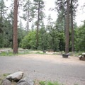Sites in the west loop. The dense trees at right surround Oak Creek.- Pine Flat Campground