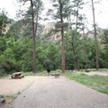 A typical campsite at Pine Flat.- Pine Flat Campground