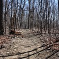 A slight incline shouldn't be a bother.- Compton Peak