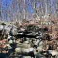 Some man-made rock steps above the columns.- Compton Peak