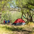 Typical tent set up at Coon Bluff.- Coon Bluff Campground