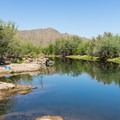The river can look very inviting on a hot day!- Coon Bluff Campground