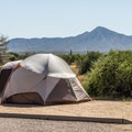 Tent camping in McDowell Mountain.- McDowell Mountain Campground