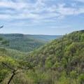 Fantastic views along the trail.- Fiery Gizzard Trail