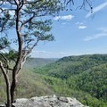 View from Raven's Point.- Fiery Gizzard Trail