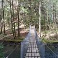 Suspension bridge to the falls.- Foster Falls