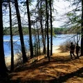 Thoreau's Cove swimming beach.- Walden Pond + Adams Woods