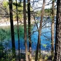 Thoreau's Cove.- Walden Pond + Adams Woods
