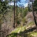 Santa Ana River Trail.- Santa Ana River Trail to Angeles Oaks