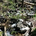 Mountain Home Creek.- Santa Ana River Trail to Angeles Oaks