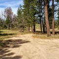 Campsites off of the main service road.- Thomas Hunting Grounds Yellow Post Sites