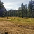 Campsite off the main service road.- Thomas Hunting Grounds Yellow Post Sites
