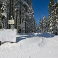 Intersecting trails are signed so skiers can choose their route.- Yuba Trail