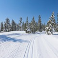 Groomed trail conditions along the Kidd Lake Trail.- Kidd Lake / Wiesel Trails