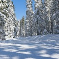 A groomed and trackless trail.- Kidd Lake / Wiesel Trails