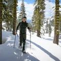 Climbing toward Ridge Lakes.- Ridge Lakes Snowshoe