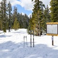The trail heads down Forest Road 29N22.- Nanny Creek / Dry Lake Trail