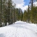 The trail is wide and easy to follow, with gradual slopes.- Nanny Creek / Dry Lake Trail