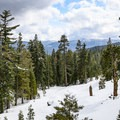 Shortly after crossing Nanny Creek is a wide vista area that made for a great turnaround point.- Nanny Creek / Dry Lake Trail